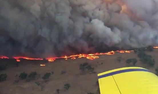 Штета од 120 милиони долари предизвикале шумските пожари во Делчево и Македонска Каменица
