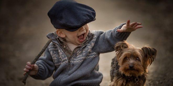 Истражување покажа дека кучињата можат да  зборуваат  со луѓето
