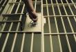 Смртта на осудениците Реџепов и Јусинов заглави во институционалните лавиринти!