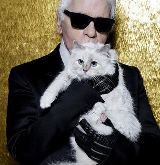 Мачката на Лагерфелд заработува повеќе од Кендал Џенер и Кара Делевин