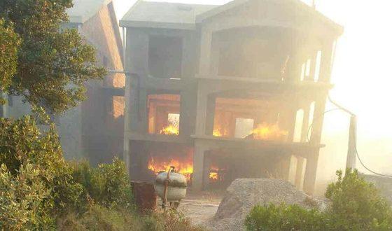 Јадран гори  евакуација во Тиват