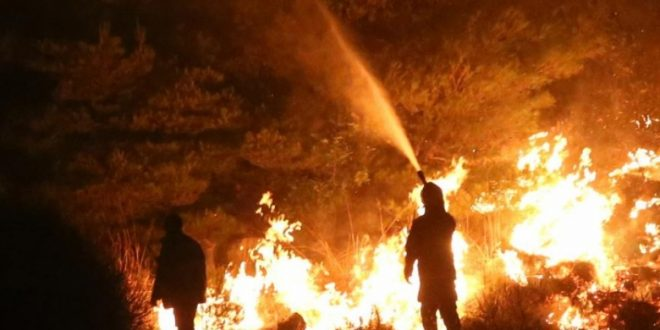 Изгореа куќа  две плевни и шума во Крива Паланка