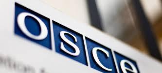 ОБСЕ  Интерпол треба внимателно да ги испита барањата на Турција за апсење на новинари