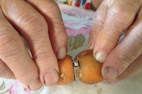po-13-godini-go-nashla-verenichkiot-prsten-okolu-morkov-shto-go-iskopala-na-farmata