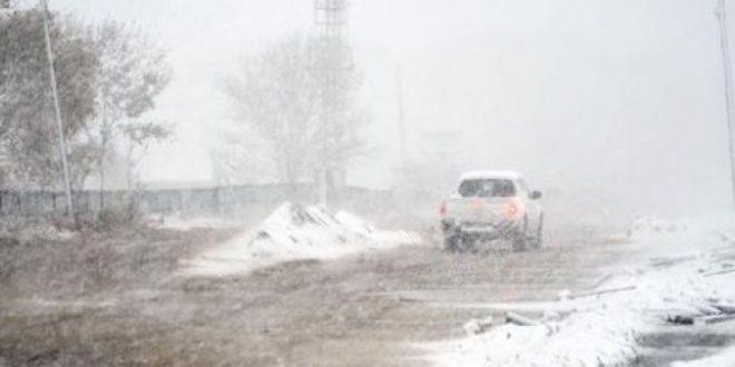 ФОТОГРАФИИ  Студена и снежна бура ја окова североисточна Турција