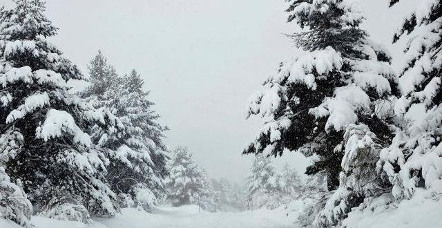Невреме и снег во Грција