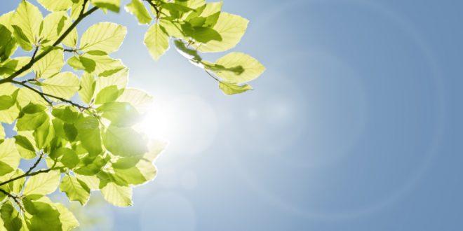 До крајот на неделава сончево и топло