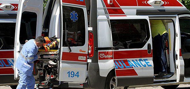 Скопјанец починал од убод на стршлен