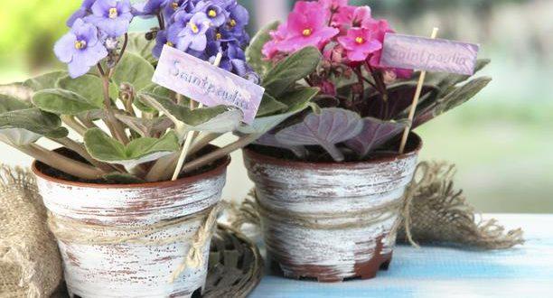 Добива цвеќе за Валентајн секоја година откако починал сопругот