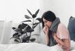 Во сезона на настинки, останете дома, наместо да одите на работа