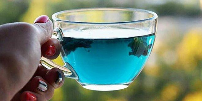 Син чај: Популарен, фотогеничен и најважно, многу здрав и лековит