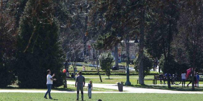 Дедо го врзал внукот за дрво во Градски парк, а внуката ја удирал по глава со палка