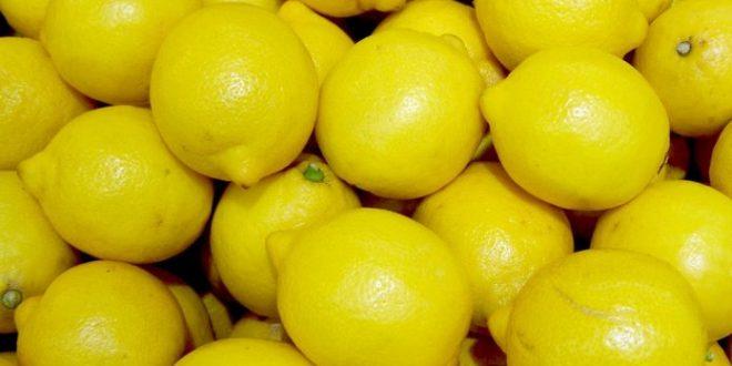 Пауновски: Трговците да не прават манипулации, лимони има и се продаваат по 70 до 110 денари за килограм