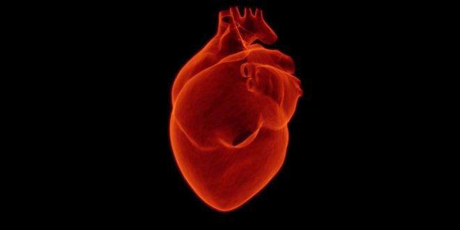 Мистерија која ги интригира лекарите: Зошто тешко заболените од корона имаат тешки оштетувања на срцето?