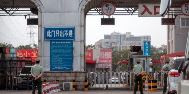 Ковид-19 пронајден на пакувања од лигњи во Кина: Секој што ги купил мора да се тестира