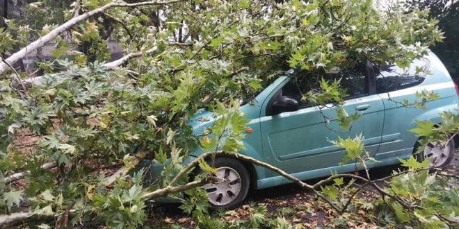 Невреме во Скопје, паднати дрвја, уништени автомобили (ФОТО)