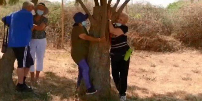 Кога не можете човек, гушнете дрво: Израел вака се соочува со проблемите кои ги прави социјалната дистанца (ВИДЕО)