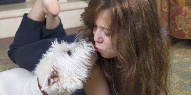 10 знаци дека вашето куче навистина ве сака